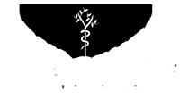 Reverse logo for Vein Center of Orland PArk in Illinois